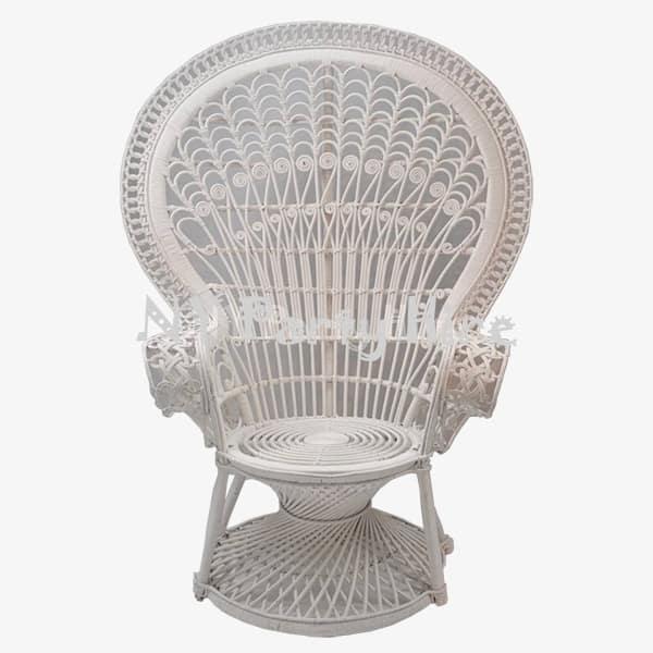 Peacock Chair U2013 001